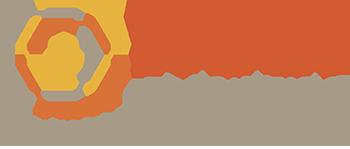 Dana Holt logo-web