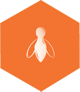 orange bee icon