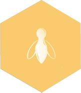 yellow bee icon