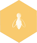 yellow bee icon